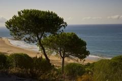 acantilado-barbate-playa-yerbabuena